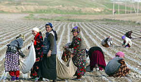 Jonas Astrup on Reforming Uzbekistan's Cotton Industry