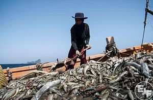 Labor Exploitation, Illegal Fishing Continue to Plague Asian Seas