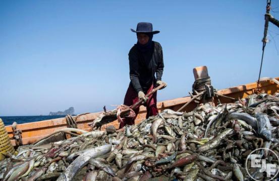 Labor Exploitation, Illegal Fishing Continue to Plague Asian Seas