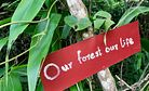 Indigenous Communities in Myanmar Take Action Against Top-Down Conservation