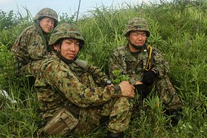 Can the Japan Self-Defense Force Age Gracefully?