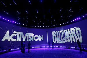Blizzard and Mei: Makings of Online Protest
