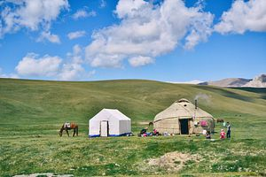 Navigating Between Academia and Activism in Central Asia