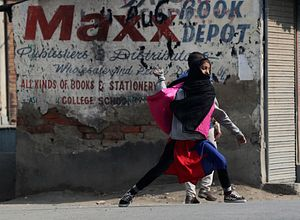 Why the European Parliament Group's Kashmir Visit Backfired on India