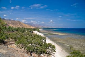 Can Tourism Become the New Economic Driver for Timor-Leste?