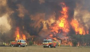 Raging Wildfires Trap 4,000 at Australian Town's Waterfront