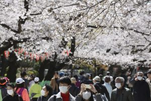 Japan's Limited Response to the COVID-19 Pandemic