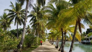 Pandemic in the Pacific: COVID-19 to Hit Pacific Economies Hard