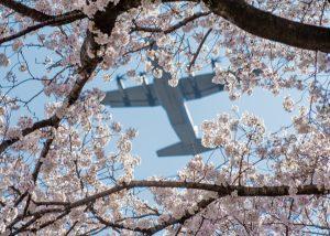 US Forces Japan Declares Public Health Emergency Amid Virus Fears