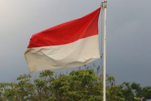 Indonesia Condemns Abuse of Its Fishermen on Chinese Boats