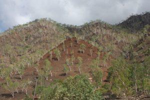 Edd Wright on Climate Resilience on Timor-Leste