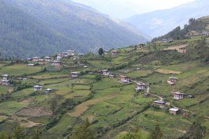 China's Bhutan Gambit