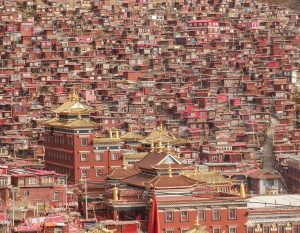 Larung Gar: The World's Largest Monastery – and Highest Slum
