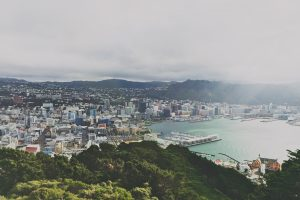 Despite Pandemic Slump, Foreign Buyers Maintain Share in New Zealand Housing Market