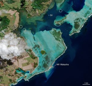 The Mauritius Disaster: Overlooked Dimensions of Maritime Security