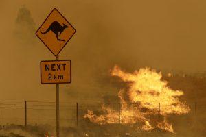 The Costs of Australia's Climate Politics