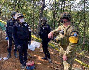 South Korea: United Nations Command, the Bête Noire of Alliance Management