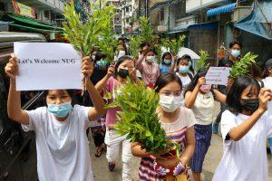 Myanmar's Democratic Vision Depends on Including Rohingya, Other Ethnic Minorities