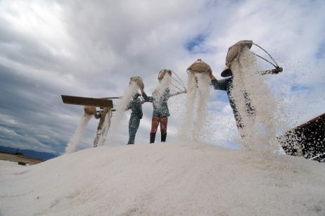 Harvesting White Gold: Vietnam Salt Farmers Amid Climate Change and COVID-19