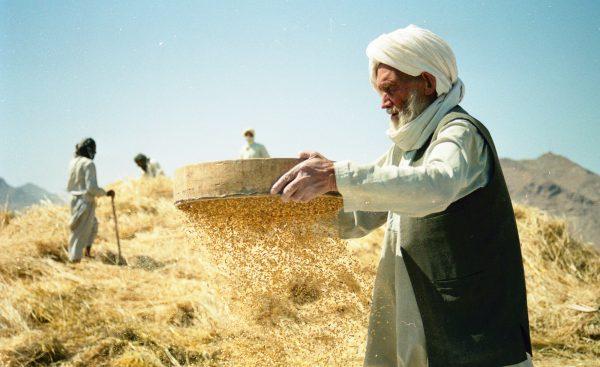 Afghanistan 2021 Bukan Afghanistan 1996. Itu Menawarkan Harapan untuk Kedamaian.  – Diplomat