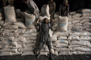 The World Must Act to Avert a Humanitarian Catastrophe in Afghanistan