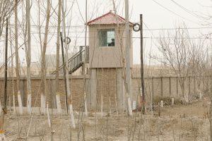 Darren Byler on Life in Xinjiang, 'China's High-Tech Penal Colony'