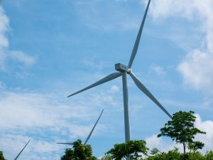 Indonesia's Climate Commitments Ahead of the COP-26 Summit